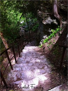 Elora Gorge: path that runs along the top of the property that is called the… Stairs To Heaven, Canadian Culture, Ontario Travel, Visit Canada, River Bank, Travel Reviews, Canada Travel, Steep Staircase, Vacation Spots