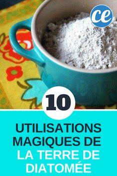 La Terre de Diatomée Est un Produit Magique : Découvrez Ses 10 Utilisations.