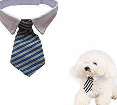 Namsan Twill Cotton Tie Small Dogs Cats Puppy Tie Neck Tie Collar Really good quality, cotton fabric 100% Quality guarantee, Pretty enough and so soft not stiff</br>Usage: It can be used on cats and also small dogs.</br> Att (Barcode EAN = 0521332682745) http://www.comparestoreprices.co.uk/december-2016-week-1-b/namsan-twill-cotton-tie-small-dogs-cats-puppy-tie-neck-tie-collar.asp