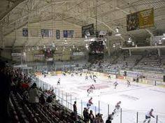 Image result for hockey barns Ontario