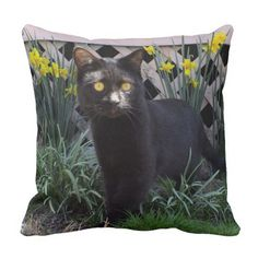 Black Cat In Daffodils Throw Pillow  Sold 6/24/14