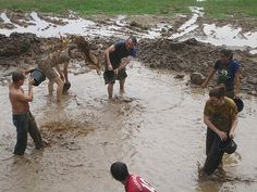 have a mud fight