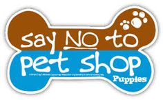 Say NO to pet shop puppies!