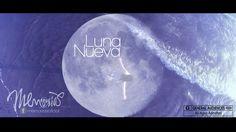 Memorias - Luna Nueva Moon, Age, Celestial, Movies, Movie Posters, New Moon, Memoirs, The Moon, Film Poster