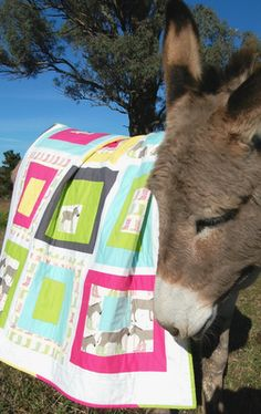 oh my gosh you have to go to the blog and see all of the pictures. Just absolutely too wonderful, quilts and donkeys.....heaven