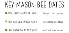 How To Help Mason Bees Thrive And Survive – West Coast Seeds Bee Facts, Mason Bees, Galway Ireland, Cork Ireland, Bee Happy, Ireland Vacation, Ireland Travel, Bees Knees, Bee Keeping
