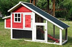 Going to rotate some chickens in my garden but need a coop. Found it at Wayfair - Pet Proposal Habitat Chicken Coop with Nesting Box Chicken Coop Designs, Chicken Coop Kit, Diy Chicken Coop Plans, Portable Chicken Coop, Chicken Coup, Best Chicken Coop, Backyard Chicken Coops, Building A Chicken Coop, Chickens Backyard