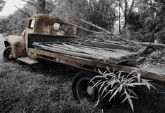 Old trucks and cars look great in the scrub.