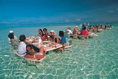 Once you're in Bora, you have to take the island trip tour by boat to get to this place. It's the south-east atoll from Bora-Bora. Whether you 'eat in the water' or not depends on the tour company chosen. Thanks to Nico