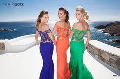 Fascinating Dresses By Tarik Ediz   Spring 2015 Collection