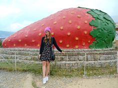Strawberry Picking Experience in Benguet + Foods to try in Baguio Baguio Philippines, Philippines Travel, Strawberry Farm, Strawberry Picking, Trinidad, Jeepney, Sweet Cones, Fruit Picking, Baguio City