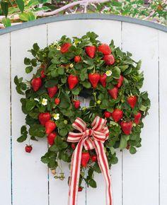 Strawberry wreath - from December 2012 issue of New Zealand Gardener magazine.