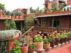 #Mexico #Gardens # Macetas and the love of pots @ Muebles  Nomad