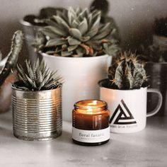 A simple life is all we need ♻️🧡🖤⚡️• Kedvenc növénykéim a kedvenc borostyán színű üveges gyertyával • A G r e e n w a y gyertyák viasza…
