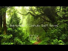 The Silent Forest, a calm Chillstep mix. Capturing the feel of the woods, listening to the silence. Enjoy! Mixomnia Receive an email whenever I upload a new ...