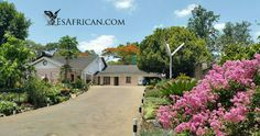 Malawi Car Transfers, Car and Driver Hire, Online Accommodation Bookings, Tours, Chichewa and Tumbuka Language and Culture Garden Lodge, Campsite, Lodges, Africa, Cottage, Tours, Places, Outdoor Decor, Travel