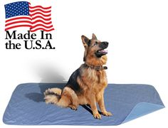 36 x 72 - XXL Big Size Premium Stain Resistant Quick Absorbent Waterproof Reusable / Quilted Washable Large Dog / Puppy Training Travel Pee Pads ** Read more  at the image link. (This is an affiliate link and I receive a commission for the sales)