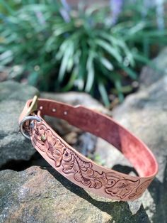 Leather dog collar Daisy 1.25 yellow with gold metallic embossing