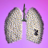 David Arky and Kellie Murphy collaborate (Americans, both based Brooklyn, NY, USA) - Healthy Lungs, Danger In The Air for Fitness Magazine Photography/Sculptures Lung Cancer Facts, Lung Cancer Awareness, Healthy Women, Get Healthy, Healthy Life, Healthy Food, Healthy Living, Emergency Preparation, David