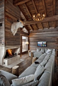 love the fireplace not the bulls head though