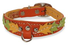 Leather Dog Collar-Autumn by RuffStuffDogCouture on Etsy