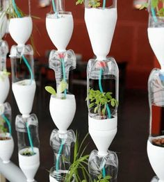 Cascades of Bottles | Hydroponic Systems Round Up