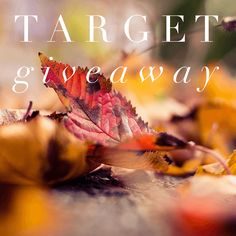 GIVEAWAY DETAILS Prize:$200 Target Gift Card Co-hosts: Dorky's Deals// Coupons and Freebies Mom// Jenns Blah Blah Blog// Pretty Thrifty// The Mommyhood Mentor®// Surviving Mommy// Bill Hiatt's Education Website// Simone – Your Style Architect// A Pocketful of Polka Dots// Parenting Healthy// The Dress Matters// Defender & Light// Craftyourself// Palmtrees & Happiness Giveaway organized by:Oh My Gosh …