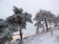 winter in italian alps. come to visit www.trekking-alps.com