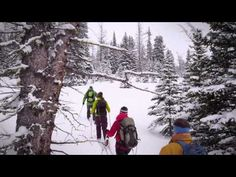 Since people from around the world have been coming to Assiniboine. Honeymoon Vacations, Ski Touring, Winter Magic, Cross Country, Mount Everest, Skiing, Around The Worlds, Adventure, Mountains