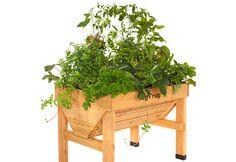 VegTrug Raised Garden Table - Perfect for decks, patios, or urban gardeing in small spaces. Raised Garden Planters, Elevated Garden Beds, Patio Planters, Raised Garden Beds, Raised Beds, Garden Table, Lawn And Garden, Home And Garden, Veg Trug