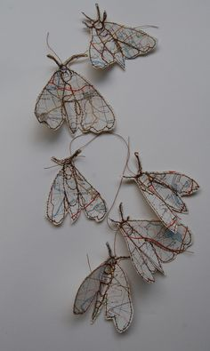 https://flic.kr/p/8rWUTx   map moths loose