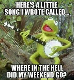 """Kermit is famous charter in cartoon movies.He is so funny character.These """"Monday Memes Kermit"""" are all about to Kermit. Just read out these """"Monday Memes Kermit"""" . Ex Memes, Memes Humor, Work Memes, Humor Humour, Ecards Humor, Work Funnies, Nurse Humor, Funny Sunday Memes, Funny Kermit Memes"""