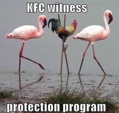 OMG that is soooo funny!!!!