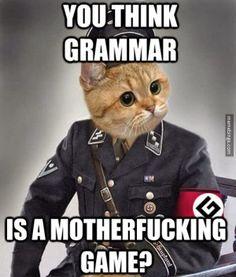 If Grammar Nazis were cats