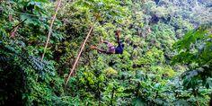 Auf der Zipline durch den Dschungel der Dominikanischen Republik fliegen