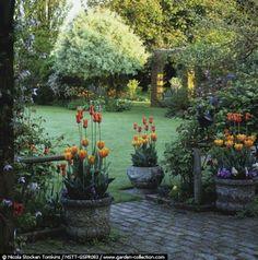 Fresh and beautiful backyard landscaping ideas 01