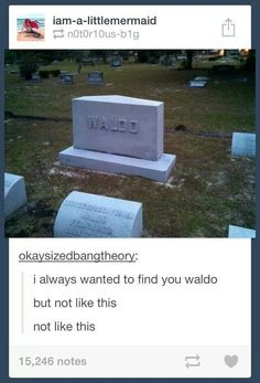 Found Waldo, tumblr funny