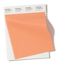 Partner with Pantone for your color inspiration. Use this quick 'Find a Pantone Color' online tool - just enter name or choose from palette. Fashion Colours, Colorful Fashion, Autumn Winter Fashion, Fall Winter, Pantone 2020, Use E Abuse, Ny Fashion Week, Nyc Fashion, Winter Colors