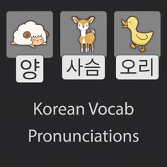 These are the native Korean pronunciations for sheep, deer, and duck. Basic animal words are good for building vocabulary. Easy Korean Words, Korean Words Learning, Korean Language Learning, Language Lessons, Learn A New Language, Korean Verbs, Korean Phrases, Learn Basic Korean, Learn Korean Alphabet