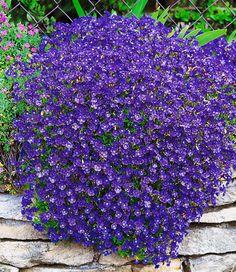 Blaukissen 'Cascade Blue'