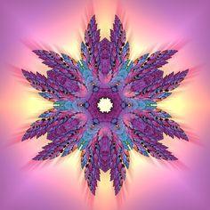 Feather Mandala - Poster