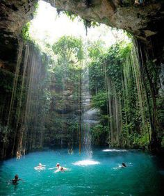 Natural swimming pool in Chichen Itza, Mexico.