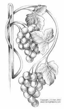 Виноград Flower Sketches, Art Sketches, Pencil Art Drawings, Easy Drawings, Coloring Books, Coloring Pages, Wood Burning Patterns, Wine Art, Fruit Art