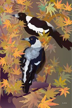 Magpies Among Maples - illustration by ©Max Fulcher Australian Painters, Australian Artists, Winter Painting, Australian Birds, Wildlife Art, Magpie, Bird Art, Bird Feathers, Beautiful Birds