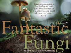 Fantastic Fungi: Coming 'Shroom