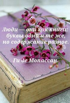Author Quotes, Wise Quotes, Motivational Quotes, Funny Quotes, Inspirational Quotes, Positive Motivation, Life Motivation, Russian Quotes, Wit And Wisdom