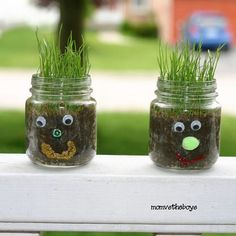 Planting small glass heads with children Welcome to Sunday Funday craft time! - Planting small glass heads with children Welcome to Sunday Funday craft time! Dulux Valentine, Baby Jars, Growing Greens, Diy Projects For Beginners, Diy Chicken Coop, Fun Hobbies, Plantar, Sunday Funday, Project Yourself