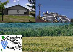 """This vineyard in PA has some of the best wine I have ever tasted! (I recommend the Fredonia) What's even more cool is that they are completely """"off the grid"""" :)"""