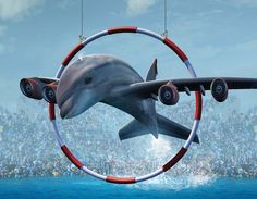 Keeping whales and dolphins in tanks is wrong. Sign and share WDC's petition. Urge British Airways to stop supporting this cruelty.