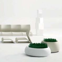 Sahara Planter with Plants and Plastic Collection